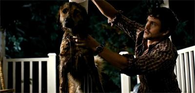 A dogged investigator...