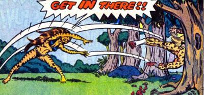 Tigra throwdown...