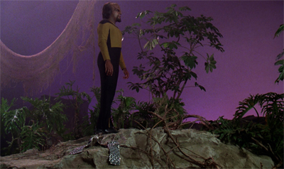 Worf! Put your sash on! You look positively indecent!