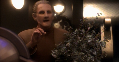 They appear to have grown on Odo...
