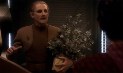 Odo is not one for flower-y expressions...
