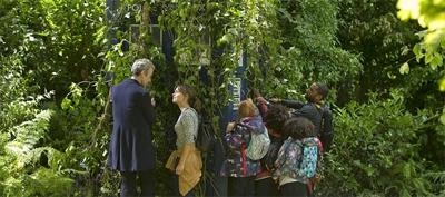 The TARDIS goes green...