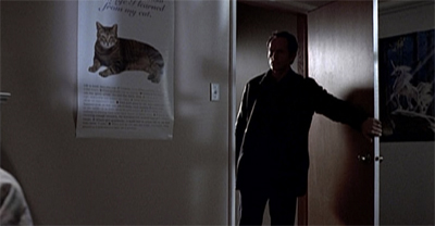 Cat posters. The root of all true evil in the world.