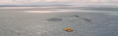 Lost at sea...