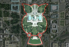Image result for washington dc owl