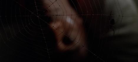 A tangled web...
