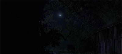 Starry, starry night...