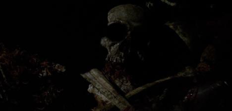 Skull and bones..
