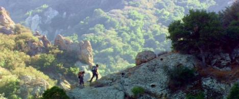 """""""Go climb a rock!"""""""