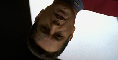 Chakotay is just dreamy.