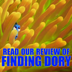 findingdory7