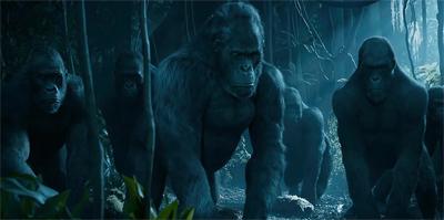Gorilla warfare.