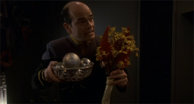 """Ornaments or flowers or me? Hm. This was much sexier when Lauren Holly did it."""