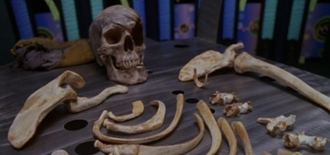 The bones of a theory.